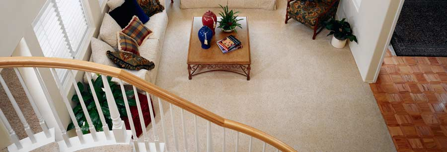 Colorado Cleaning and Restoration clean carpet, air duct cleaning, pet odor, tile and grout, wood floors and furniture